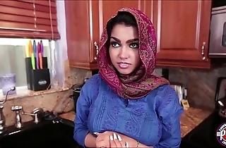 Arabian demoiselle funding